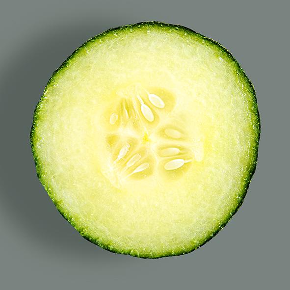 _DV15120-komkommer2