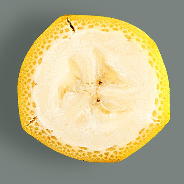 _DV15123-banaan2