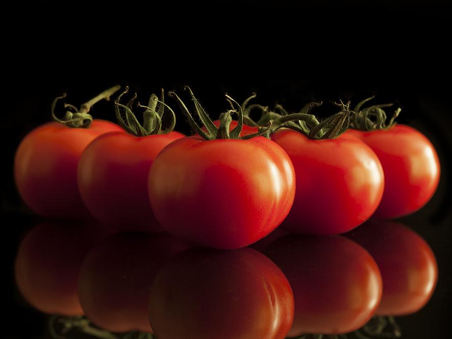 IMG_4096-Tomaten-BU-40-30