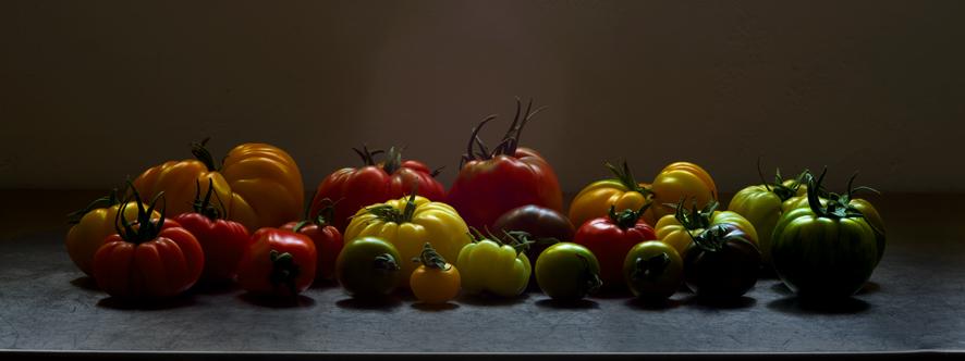 _MG_8476-tomaten-def2-Epson