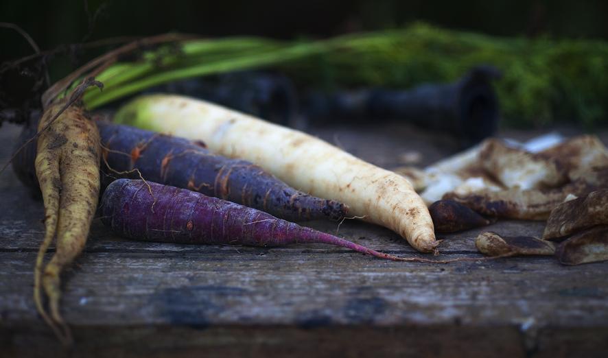 _MG_9018-vier wortels-Epson