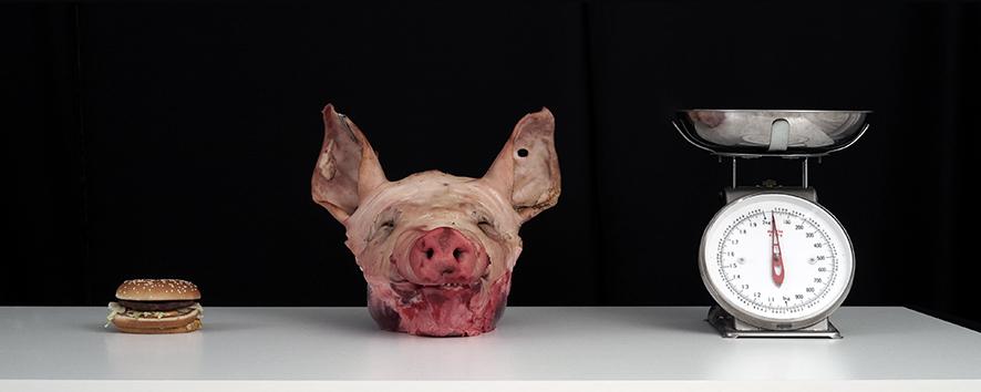 IMG_2168-varkenskop-hamburger-weegschaal-nieuw-60-24-2015